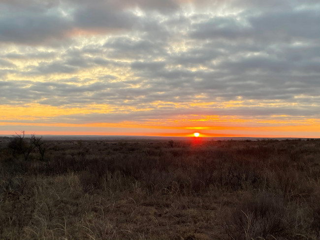 There is nothing better than being up early at the ranch to drive out in the middle of no where to watch the sunrise.