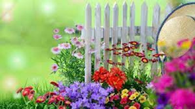 Gardening and having different flowers in our garden is important to us