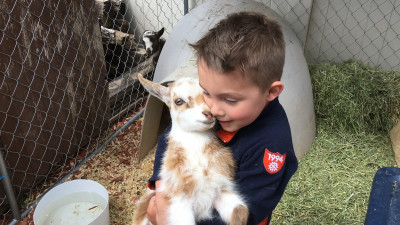 We love animals! Anytime we see one we have to stop and pet it if we can.  He says he want to be a zoo keeper when he grows up.